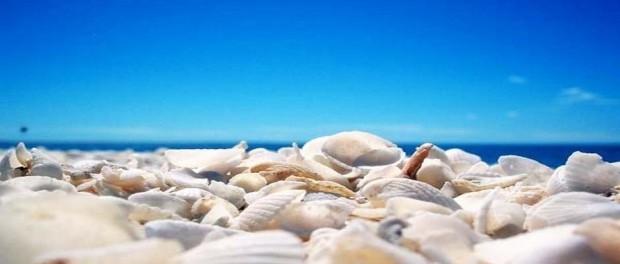 Plaze Atine,slobodne i ciste